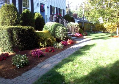 Front Yard and New Azaleas