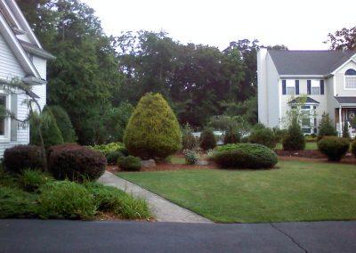 Groomed Yard