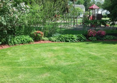 Lawn and Beds